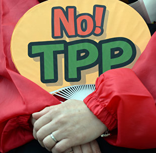 A demonstrator holds a fan with No! TPP in a protest against the Trans Pacific Partnership (TPP) trade deal at a sit-in demonstration in front of the parliament building in Tokyo